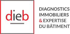 diagnostic immobilier ile-de-france
